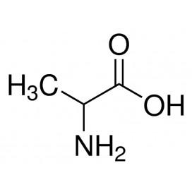 DL-Alanine, 99.0+%,