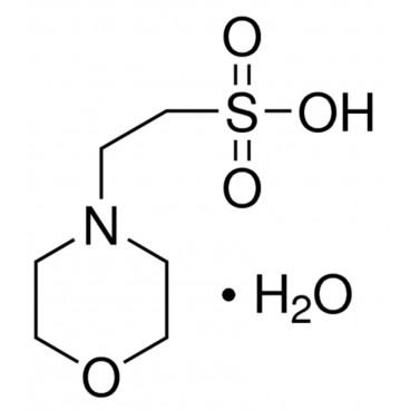 MES monohydrate, 2-(N-Morpholino)ethanesulfonic acid monohydrate, 99.5+%